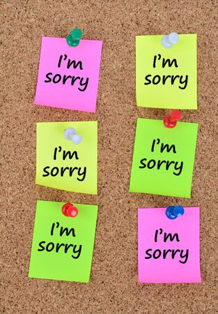 pardon: The words Im sorry on colorful notes