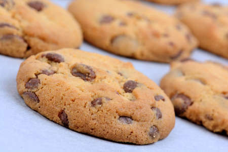 Chocolate chip cookies on baking paper close-up