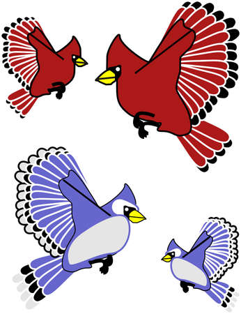 Blue Jay and cardinal clip art isolated Çizim