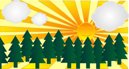 smog: Coniferous trees outlined by the bright sunshine,smog free,  and clean air environment..