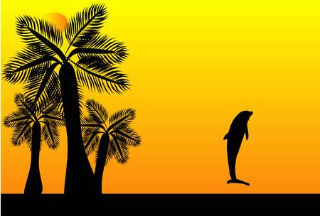 Dolphin jumping into the tropical sunset Vector