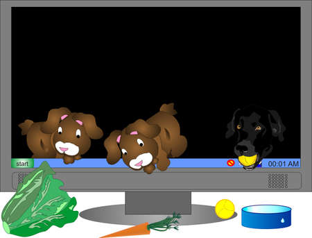 Two virtual rabbits and one black lab, self feeding from out of screen on monitor..