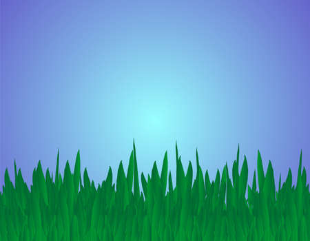 grass blades: Blades of grass Illustration