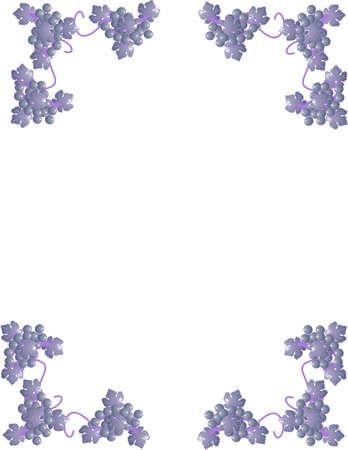Las uvas y las viñas que forman las esquinas y se pueden utilizar como marcos, papelería y mucho más ... Foto de archivo - 4449888