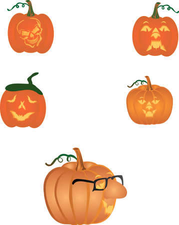 Variety of wonderful pumpkins for Big and small.... Vector