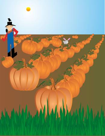 An illustration of a scarecrow guarding the field full of pumpkins, ready to be picked for Halloween and Thanksgiving...  scare the crows away, but they love him as a perch..