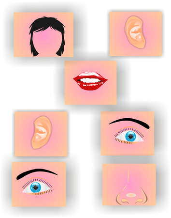 smelling: Metaphor of: Face pieces representing the mismanagement of keeping things in order..  Putting things in their proper place and perspective.. Illustration