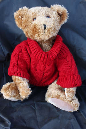 questioned: Teddy says, May I please.... Teddy bear looking up with a questioned look...