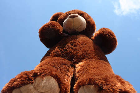Teddy bear standing up and looking down at you....  Wanting a hug..