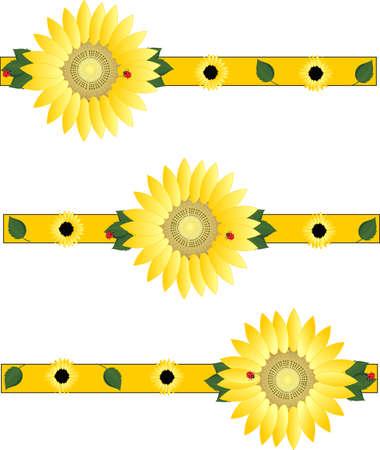 Beautiful sunflowers brightening the day...