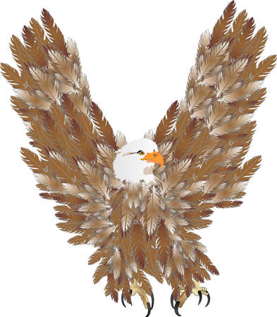 Eagle soaring above, looking for prey  to feed on... Stock Vector - 4811097