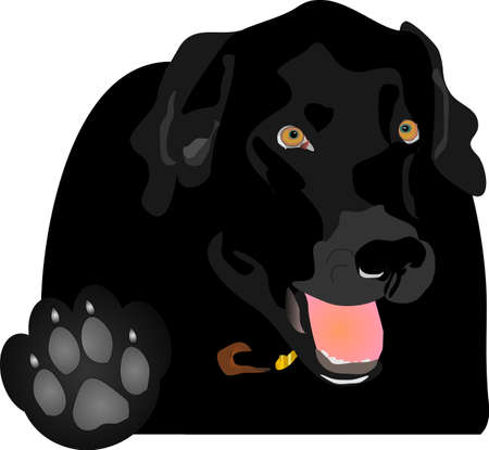 Black Labrador holding up the paw, saying Talk to the Paw!  Play on words.. Illustration