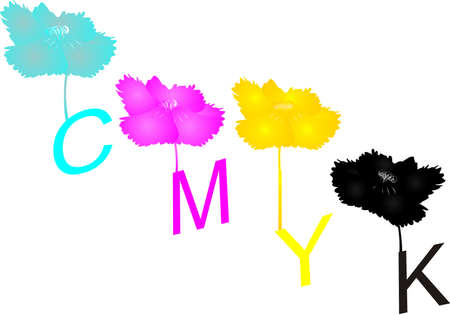 Colored flowers  in CMYK colors... CMYK used in printing and more... Vector