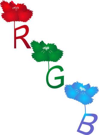 플로랄 디자인, RGB로 표현 된 색상의 아름다움은 주로 전자 시스템 및 일반 사진의 이미지 표현 및 표시에 사용됩니다.