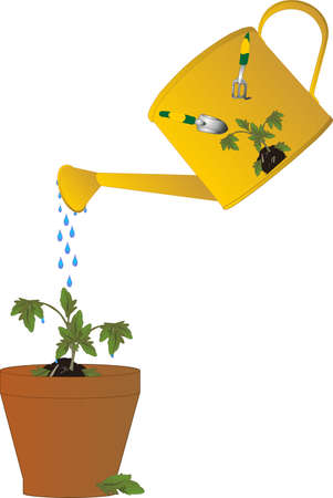 beginnings: Watering the new seedling with nourishments, will bring forth many great fruits, and new growth.