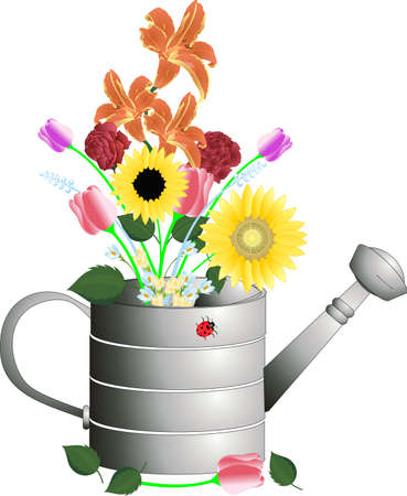 crocus: Watering Can with cut flowers in an arrangement illustration..