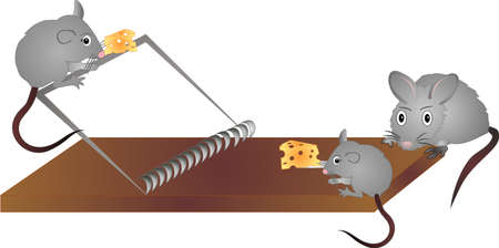 3 mice playing around mouse trap to get cheese to eat..