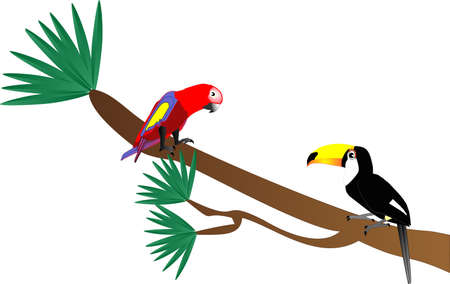 omnivorous: Tuscan and Parrot sitting on a tree limb illustration