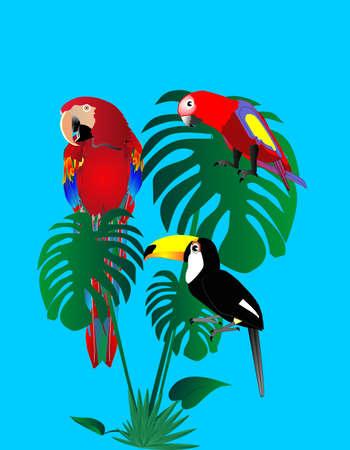 さまざまな年齢層や熱帯の木の葉の上に座っているトスカーナのオウム.