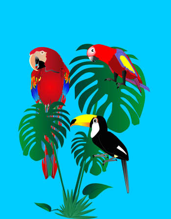 2 parrots of different ages and a tuscan sitting on a tropical tree leaf... Stock Illustratie