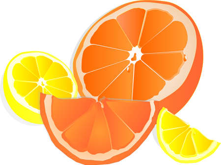 Halves and a quarters of a juicy lemon and orange with citrus droplet,the right sweet and tart taste... Vettoriali