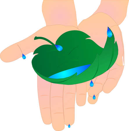 Childs hands holding a leaf catching the most valuable non renewable resourse..water