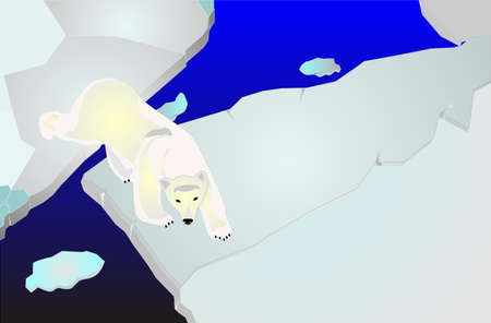 Polar berar illustration, walking across ice packs, looking for food Vector