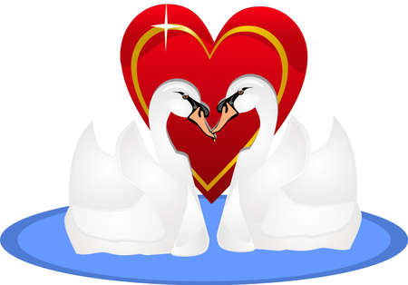 lovers kissing: Two swans swimming, and are in love for life, with their heart out for all to see.. Illustration