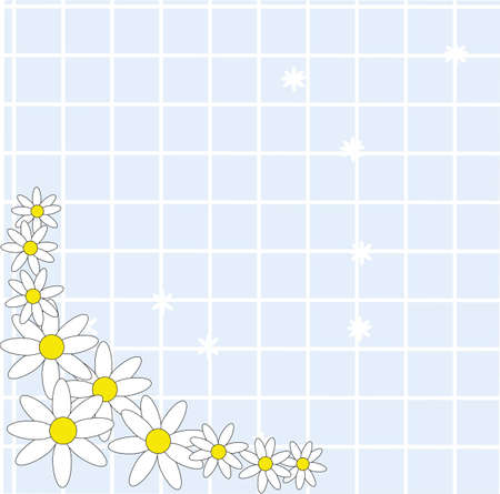 Daisies on a woven mat of powder blue..