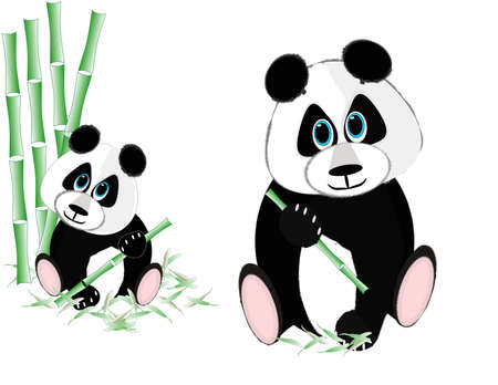Two pandas eating bamboo over white and isolated. Иллюстрация