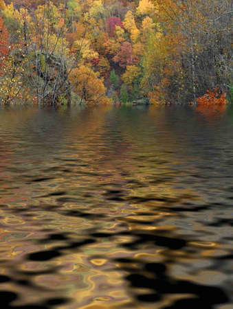 Autumn colours on the trees, a beautiful day by the lake Stock Photo - 9820224