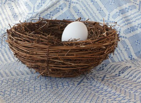 Single white Egg in a Nest with woven cloth background
