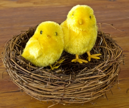 pullet: Easter chicks in a nest on a wooden table Stock Photo