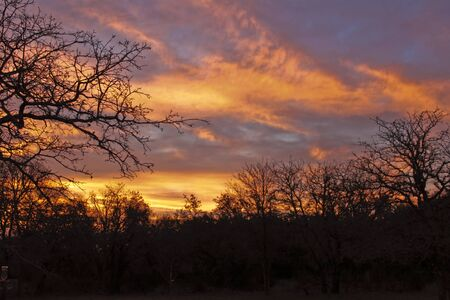 arise: Sunrise in the country on a wintry morning
