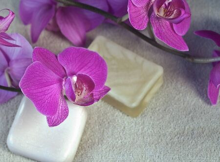 Bright pink orchids with soaps and towel for a spa Stock Photo - 14085661