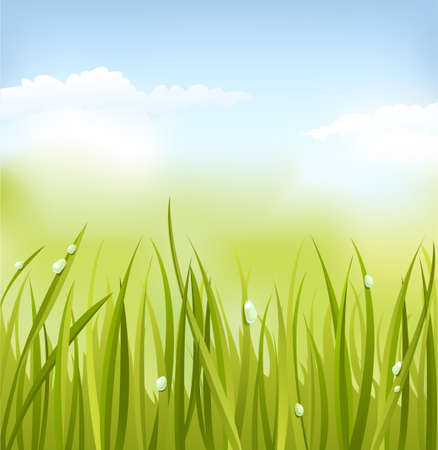 Green Gras Standard-Bild - 4579053