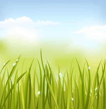 noone: Green grass