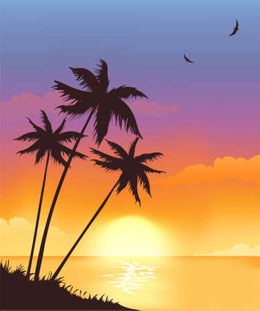 Beautiful sunset Illustration