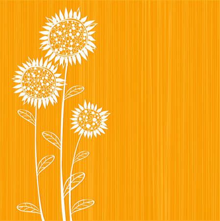 Sonnenblumen Standard-Bild - 4695358