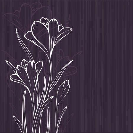 krokus: Lila-design met krokus silhouetten