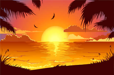 tropical bird: Holiday beach