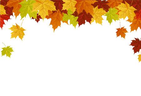 Herbst Blätter Standard-Bild - 5415535