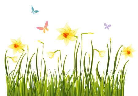 Daffodil veld Stock Illustratie