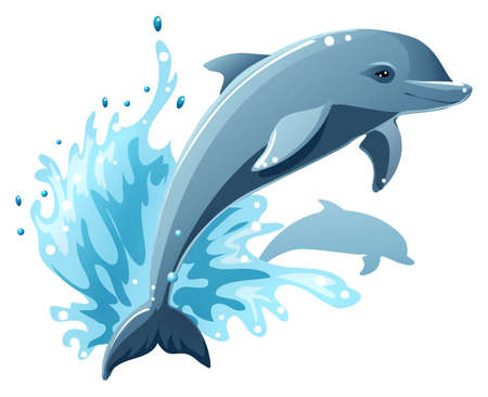dolphin: Dolphins Illustration