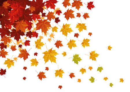 Otoño leafs caída hacia abajo