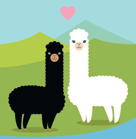 Alpacas in love