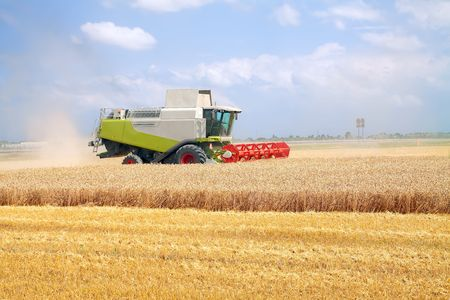 modern combine harvester working on a wheat crop Stock Photo - 7483384