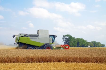 modern combine harvester working on a wheat crop Stock Photo - 7853767