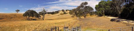 The dry desolate fields of the Adelaide hills in summer.