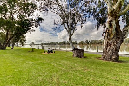 Gum Trees and Park along side Murray River,South Australia. Stock Photo